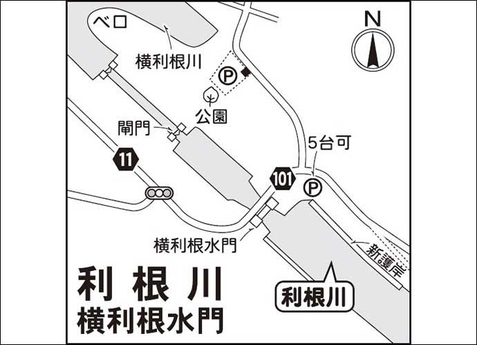 今週のヘラブナ推薦釣り場【利根川・横利根水門付近の水路】