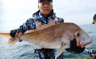 落とし込み釣りで高級魚三昧 マダイにヒラメにヒラマサ【山口・入江丸】