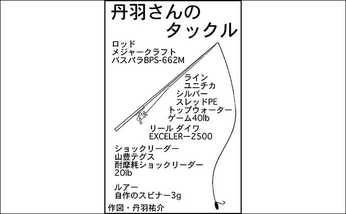 デイナマズゲームで本命56cm 自作スピナーにヒット【愛知・鴨田川 】