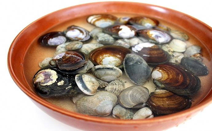 兵庫の養殖カキで「季節外れ」の貝毒が報告 通常は春〜夏に発生のナゾ
