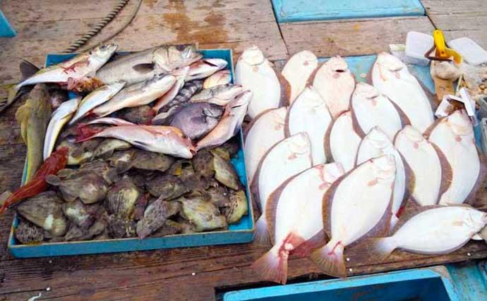 【三重・愛知】沖のエサ釣り最新釣果 ウタセ五目で魚種多彩に堪能