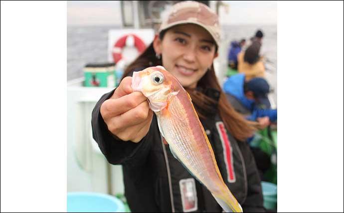 相模湾アマダイ釣りで特大50cm浮上 初心者でも大型射程内【まなぶ丸】