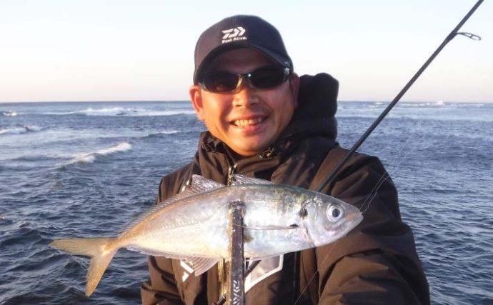 アジングで良型入れ食い49尾 数釣りのコツも解説【千葉・大沢漁港】