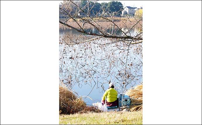 今週のヘラブナ推薦釣り場【群馬県・城沼】