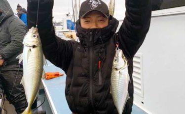 【相模湾2020】『ビシアジ五目』釣り入門 状況に応じて大型魚狙いも