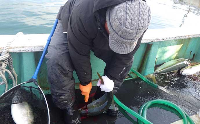 【釣果レシピ】冬の魚鍋:野菜たっぷり『ブリしゃぶ』 今期は絶好調?