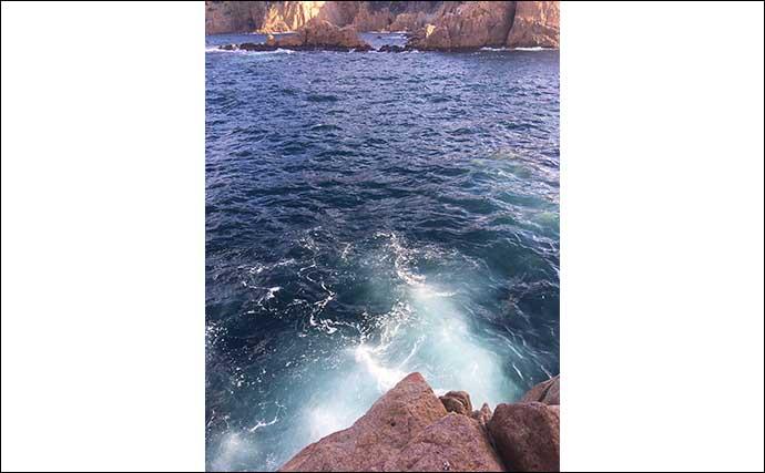 磯フカセで尾長グレ連発 見極めるべき釣り場の「クセ」とは?【山口】
