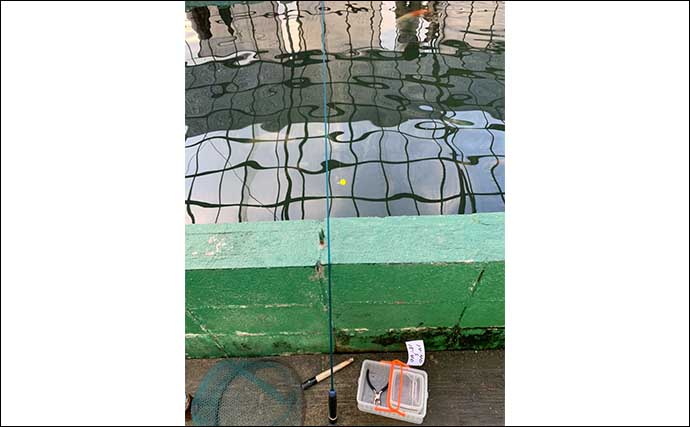 浜名湖FRで「イズミダイ」釣り満喫 初心者でも手軽に大物を狙える
