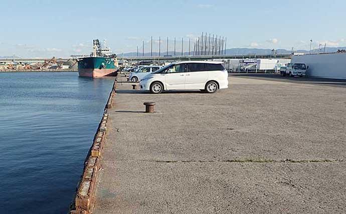 【関西2021】車を横付けできるオススメ波止釣り場5選 寒さ対策は万全