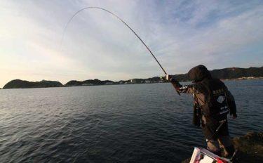【和歌山2021】年末年始の『寒グレ』フカセ釣りオススメ磯5選