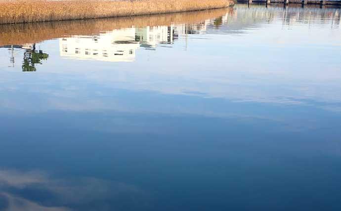 【静岡2020】汽水域のオススメ釣りターゲット4選 釣行の注意点とは?