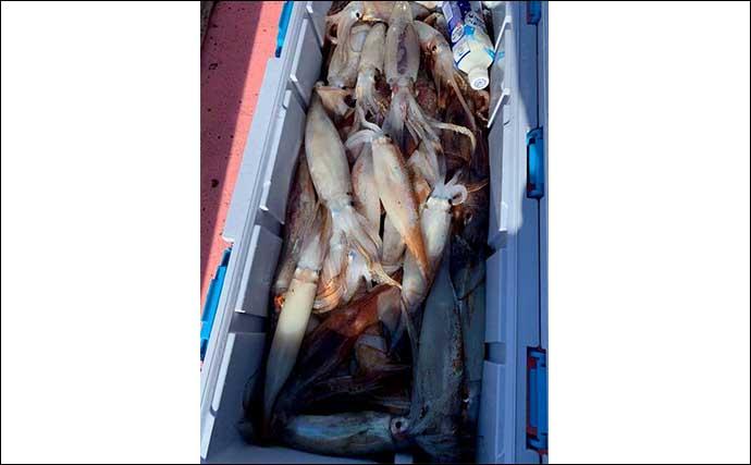世界遺産『知床』を釣る:秋~冬のオススメ釣り物紹介 シケ時は温泉へ