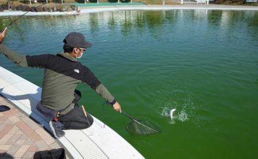 冬場のプールで実釣検証 新『ベレッツァプロトタイプ』の実力とは?
