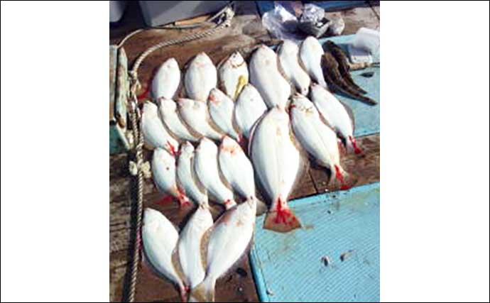 【愛知・三重】沖のエサ釣り最新釣果 高級鍋食材「オニカサゴ」が好機