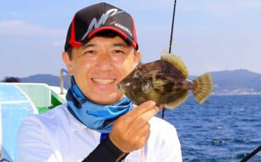 【関東2021】冬の「カワハギ」攻略法 タックル・釣り方・ポイントまで