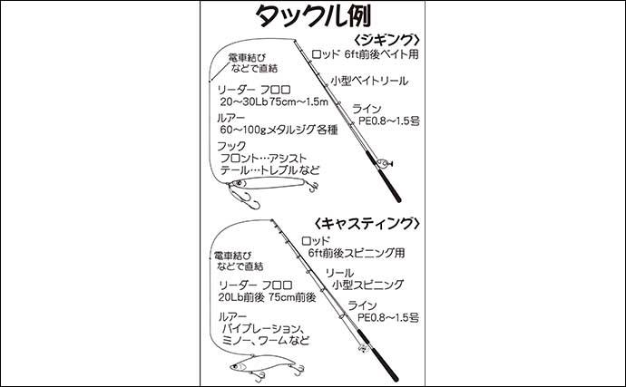 東京湾「オフショアシーバスゲーム」入門 タックル・ルアー・釣り方