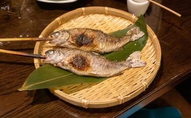 馴染深い淡水魚「ニジマス」は実は侵略的外来種 功績あれば悪影響も