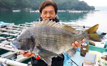 名手・山本太郎が語る2020年のチヌ釣り総括 年始の攻略法を解説