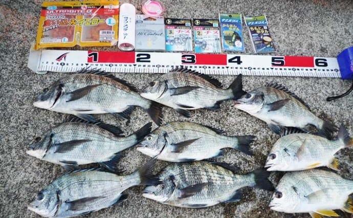 紀州釣りでクロダイ&キビレ9匹 ステージ作りがキモ【愛知・常滑港】