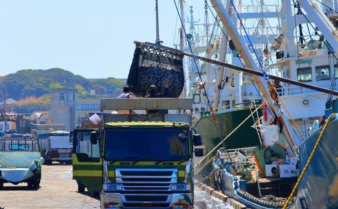 2020年の主要漁港『水揚げランキング』発表 銚子港が毎年トップのワケ