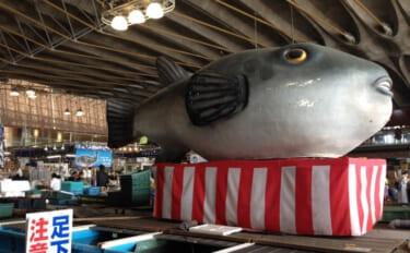 水族館で「節分」にちなんだフグが展示 フグはそもそも「福」だった?
