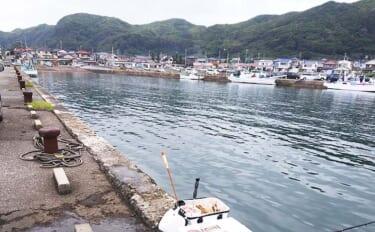 大人気釣り場『乙浜漁港』で車両が進入禁止に 気になる理由と期間を取材