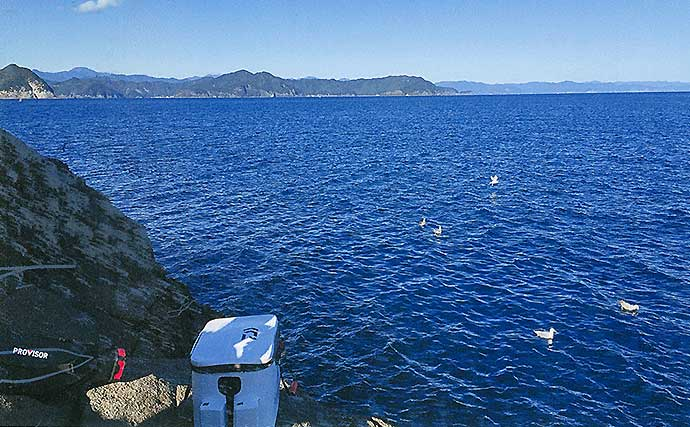 沖磯フカセ釣りで40cm級「寒グレ」好捕 水温下がる今が好機【三重】