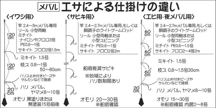 【関東2021】船メバル釣り初心者入門 タックル・釣法・オススメ船宿