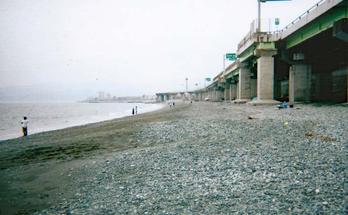 冬の西湘サーフで投げカワハギ釣り 25cm級の肝パン手中【国府津海岸】