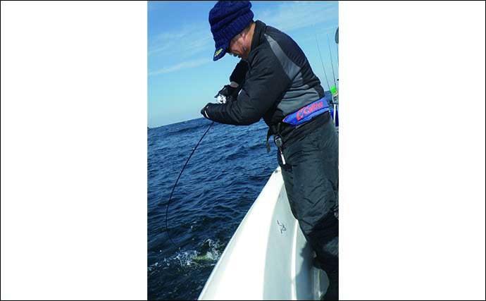 鳴門海峡ジギングでブリ族連打 良型青物ツ抜けでクーラーは満タンに