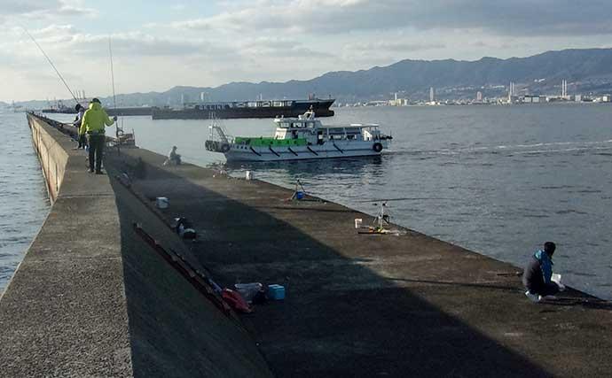 沖堤サビキ釣りでデカアジ御用 「緑色」仕掛けが奏功【武庫川一文字】