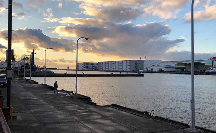 電車で行けるカサゴ好釣り場:大阪南港周辺 パックロッドで楽しもう