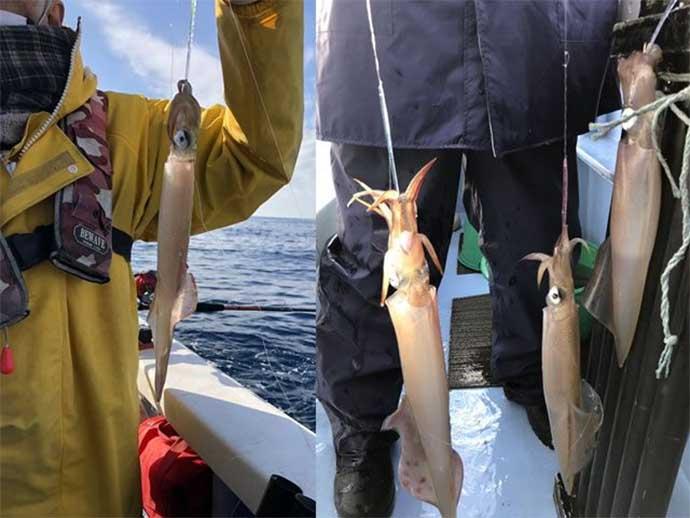今日ナニ釣れた?沖釣り速報:外房でヒラメ&ヤリイカが好調【関東】