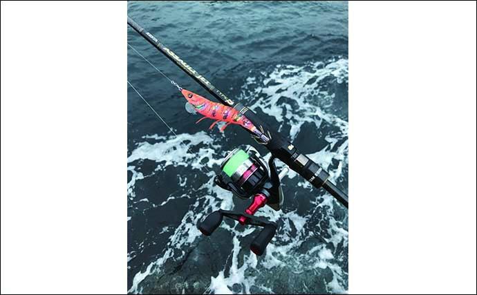 今さら聞けないエギングのキホン:釣り方&ポイントに関する用語を解説