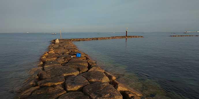 大阪泉南の根魚好釣り場:鳥取ノ荘周辺 テトラでメバル&穴狙いでソイ