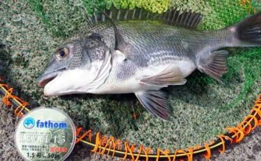 今さら聞けないフカセクロダイ釣りのキホン:コマセの撒き方と練習方法
