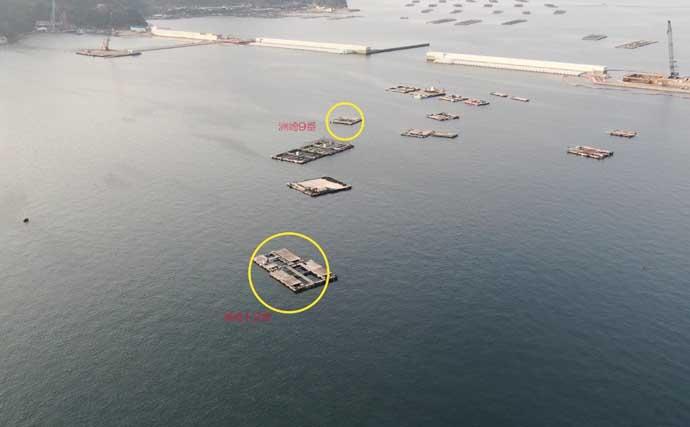 今期不調の淡路島で投げカレイ釣り 35cmマコ手中【じゃのひれ筏釣り】