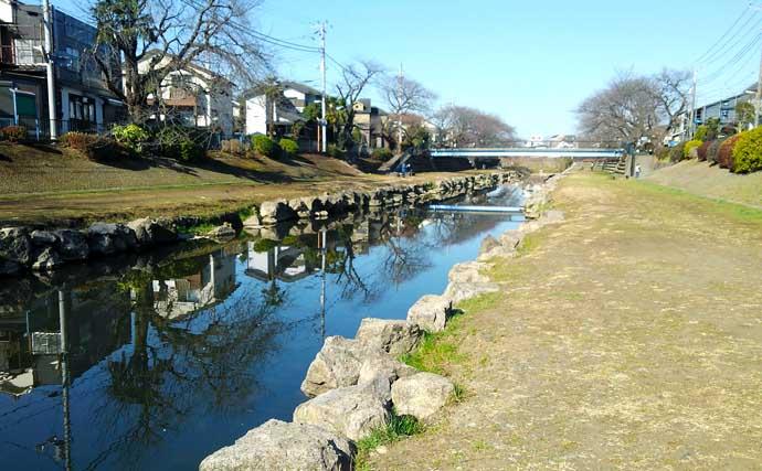 東京多摩エリアで淡水小物釣りを楽しもう 入門にもオススメの釣り場3選
