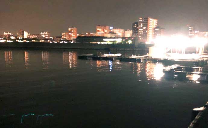 厳寒期のアジングは難易度高し 本命不発も良型メバル浮上【垂水漁港】