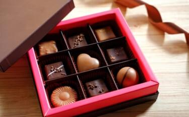 エサが『ちょっと変』な養殖ブリ 「チョコ」の次は「アセロラ」?