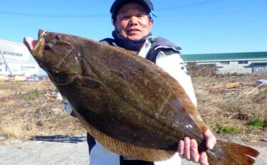 「泳がせ釣り」で大型魚祭り ヒラメにサワラにワラサ【愛知・石川丸】