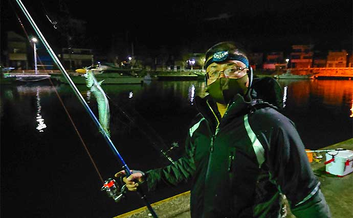 波止サビキ釣りで「マイワシ」爆釣 2時間で110尾釣果【神奈川・三崎】