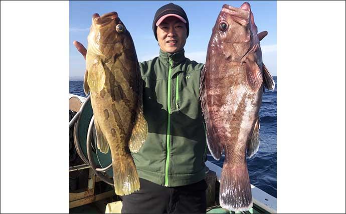 【東海2021】イワシ泳がせで狙う「ハタ釣り」超入門 タックル~釣り方