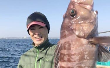 イワシ泳がせ釣り激アツ マハタ・ホウキハタ・キジハタ【三重・魚勘丸】