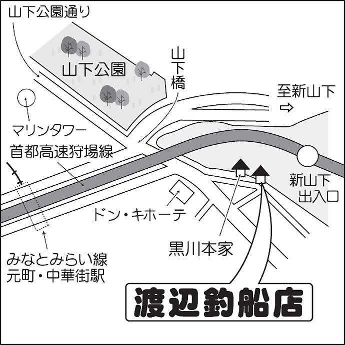 東京湾シーバスジギング絶好調 ヒット連発で60尾達成【渡辺釣船店】