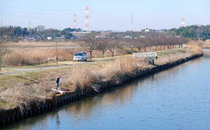 今週のヘラブナ推薦釣り場【千葉県・印旛新川】