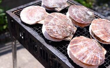 ホタテ貝殻の『合格守り』が話題に 自作の際は「養殖方法」に要注意?