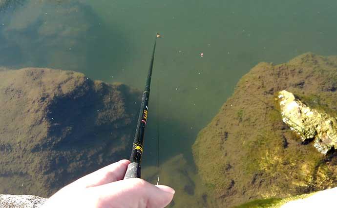 東京都多摩エリアで淡水小物釣りを楽しもう:釣行の流れと釣り方キホン