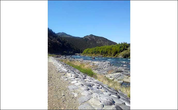 【東海2021】渓流アマゴ好釣り場:長良川郡上本流エリア