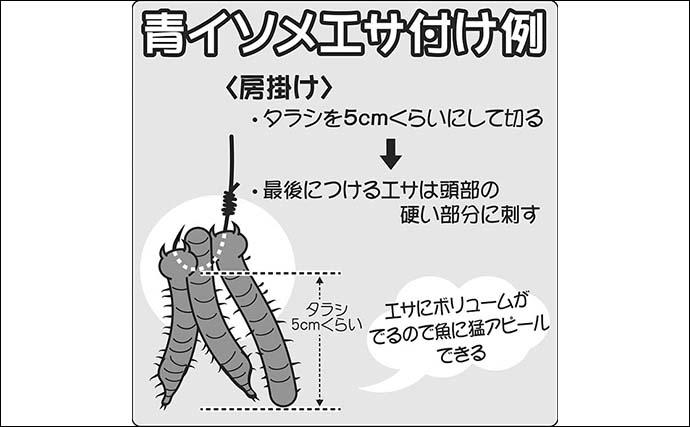 【東京湾2021】船マコガレイ釣り基本 タックル・釣り方・おすすめ船宿